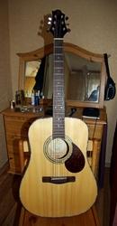 Новая гитара (western) Greg Bennett модель D-9