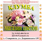 Магазин цветов КЛУМБА