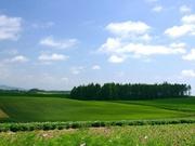 Землю 8, 8 га сельхоз назн. в Ставропольском крае продадим
